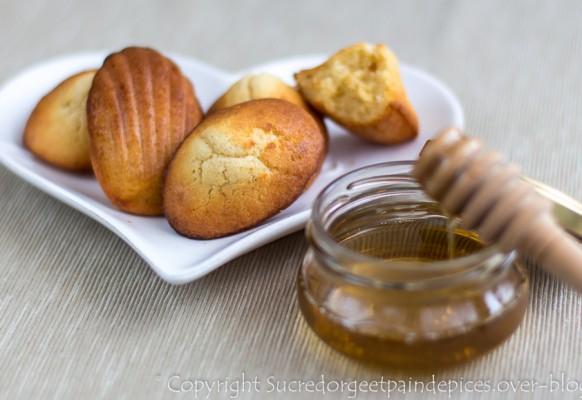5 – cuisine, madeleines, Sucredorgeetpaindepices.over-blog.com – 15