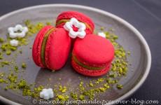 Macarons pistache/griotte