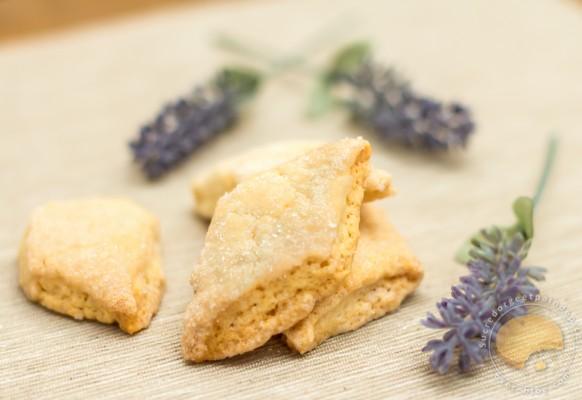 Cuisine – Canistrelli – biscuit