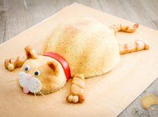 Gâteau d'anniversaire chat façon entremets fruits rouges et lait d'amande